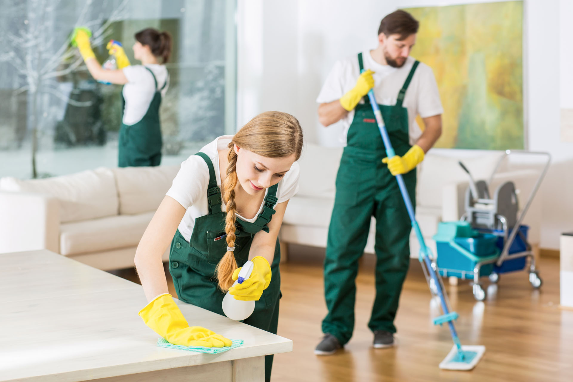Tammies Cleaning Demo 03